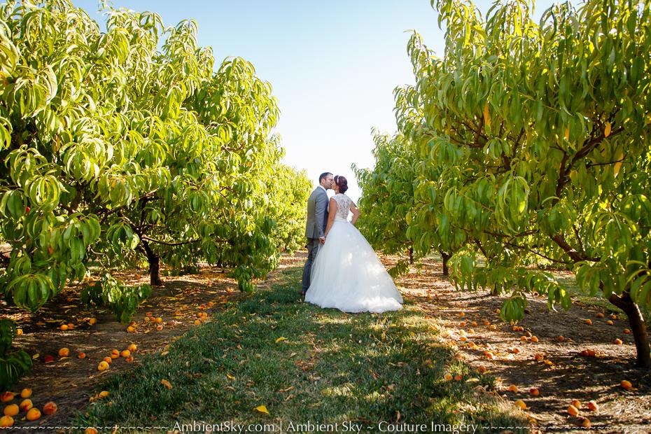 Jossy Farms Wedding Photograpy