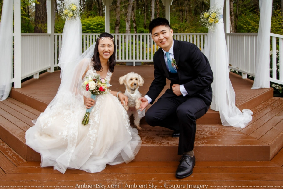 Camas Meadows Wedding Photography Cute Dog